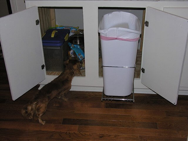 Stowing away your trash can can help keep Fido out of the garbage.