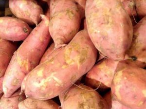 The simple unassuming sweet potato. Soon to become an amazing patty.