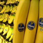 So many bananas. So tasty.