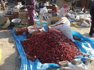 Got a ton of chilis? Dry them whole!