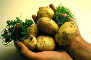 Keep potatoes longer with a few simple tips.