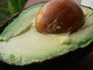 Ripe, creamy, delicious. How do you ripen avocados faster?