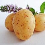 best potato peeler for home kitchens