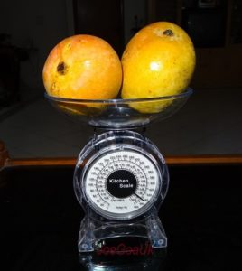 two mangos on manual food scale