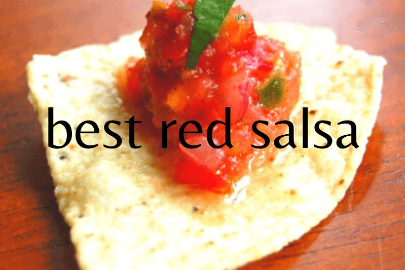 dot of salsa on tortilla chip